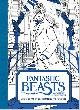 9780008204648 HARPERCOLLINS PUBLISHERS, Fantastic Beasts: and Where to Find Them A Book of 20 Postcards to Colour