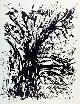 , Claude Evard ('Claudévard' 1930 à Bienne). Végétation, lithographie,  épreuve d`artiste 18/35.